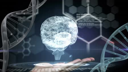 atomic model : Digital animation of a hand holding up a hologram of a brain between two dna helix. Hexagon shaped lights are blinking on the background with program codes.