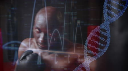 атомный : Close up of an African-american boxer training on a punching bag. Digital animation of a DNA helix, graphs and statistics are running in the foreground