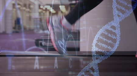 aeróbica : Close up legs running on a treadmill at the gym. Digital animation of a DNA helix and heart monitor can be seen in the foreground