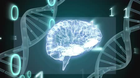 lobe : Digital animation of a brain between two DNA helix. Binary codes are flying in the foreground