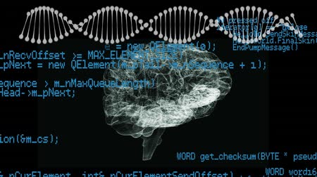 lobe : Digital animation of rotating human brain and DNA helix in a black background. Interface codes can be seen moving in the foreground Stock Footage