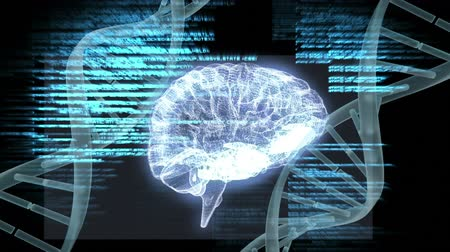 lobe : Digital composite of human brain and DNA helix in dark background while interface codes move forward Stock Footage