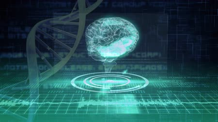 temporal : Digital animation of brain and DNA helix with program codes in the background