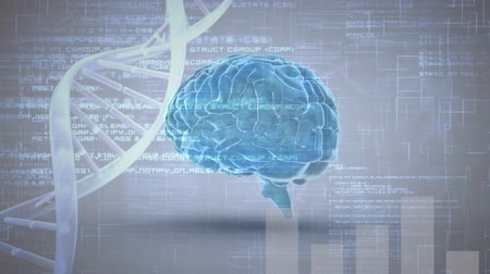 lobe : Digital composite of a brain and DNA helix with program codes Stock Footage
