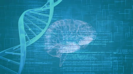 lobe : Digital animation of a rotating brain beside a DNA helix. Interface codes are running in the background Stock Footage