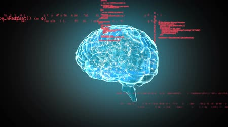 lobe : Digital animation of a digital brain rotating with program codes moving in the screen Stock Footage