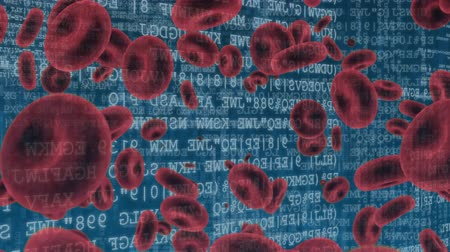 animação : Digitally generated animation of red blood cells and binary codes moving in the screen