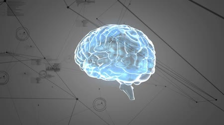 lobe : Digitally generated animation brain rotating while background shows graphs connected by asymmetrical lines moving Stock Footage