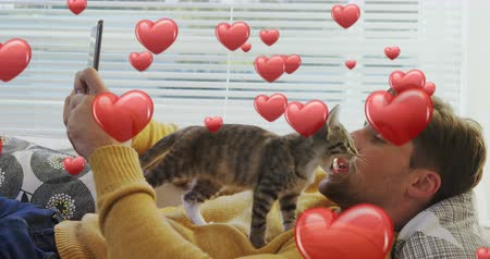 příloha : Digital composite of a Caucasian man lying in bed while texting with a kitten on top of him and digital hearts flying in the foreground 4k
