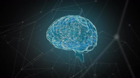 lobe : Digital animation of a glowing brain with connected network of lines and dots in the foreground