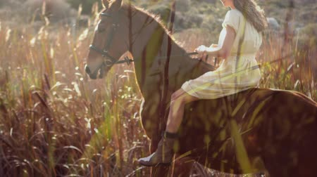 field study : Digital composite of a Caucasian woman riding a horse through a wheat field with wheat in the foreground