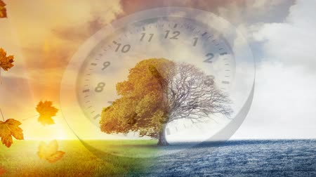 timeline : Digital composite of a tree with winter and autumn seasons on each side and a clock in the middle Stock Footage