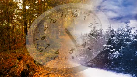 timeline : Digital composite of winter and autumn seasons separated by a clock in the middle Stock Footage