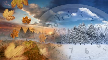 timeline : Digital composite of trees both at winter and autumn season with a clock running in the foreground