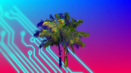 botanik : Digital animation of colorful palm tree and digital circuit moving in the screen against a colorful gradient background Stok Video