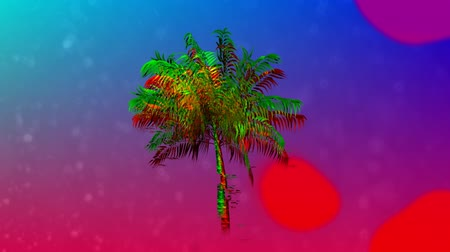 botanik : Digital animation of colorful liquid moving in the screen with colorful palm tree move in the blue and pink gradient background Stok Video