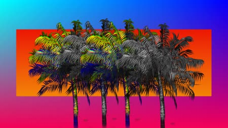 различный : Digital animation of colorful and monochrome palm trees moving in the screen and a background of blue and violet gradient with different orange shapes from triangles to circles and then rectangle