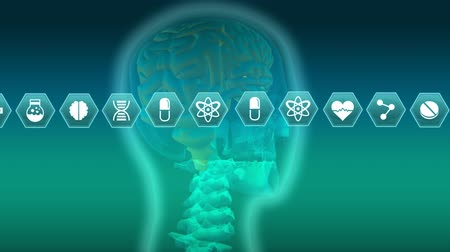 humans : Digital animation of different medical icons in blue hexagons moving in the screen. Blue gradient background shows a digital head with a view of the skull, brain, and spine. Stock Footage