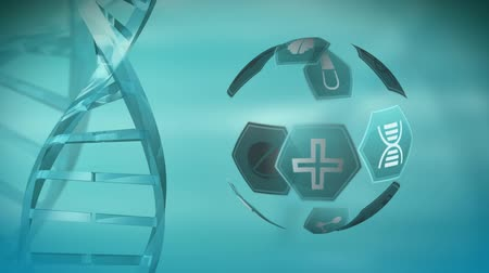 nápad : Digital animation of different medical icons in hexagons arranged in a sphere rotating beside a DNA double helix against a blue background. Dostupné videozáznamy
