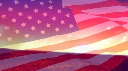 národní vlajka : Digital animation of American flag waving with background of plain with view of the sky with clouds during sunset Dostupné videozáznamy