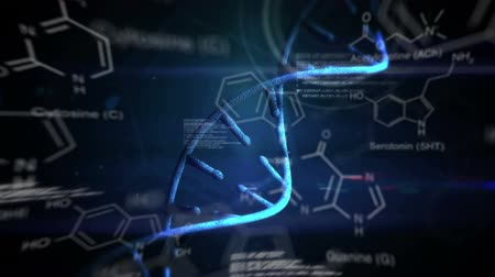 evidência : Digital animation of studying DNA helix. Molecular structure illustrations and codes are running in the background Vídeos