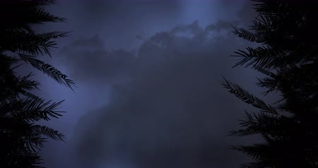 electric strike : Digital animation of silhouette of trees with lightning moving in the sky and clouds in the background