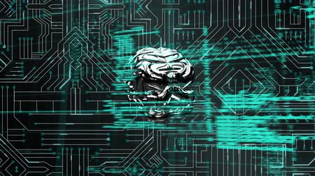 matter : Digital animation of a silver rotating brain on a circuit board background. The foreground is filled with program codes on grid lines Stock Footage