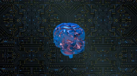 lobe : Digital animation of a brain rotating on a circuit board. The circuit board has bright shining particles Stock Footage