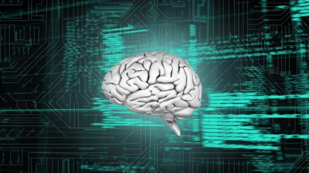 command : Digital animation of a brain rotating in the middle of the screen while background shows a digital circuit with program codes move in the screen Stock Footage