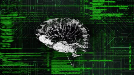 command : Digital animation of a white digital brain rotating in the screen while program codes move in the background with a digital circuit. Stock Footage