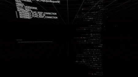 хакер : Animation of computer codes moving against black screen Стоковые видеозаписи
