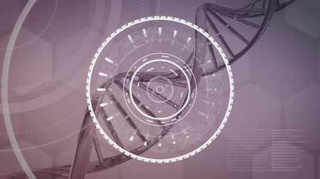 уменьшающийся : Animation of diminishing concentric rotating white rings with lines emanating from them, while a strand of 3d DNA turns on a muted violet background with pale flashing hexagons