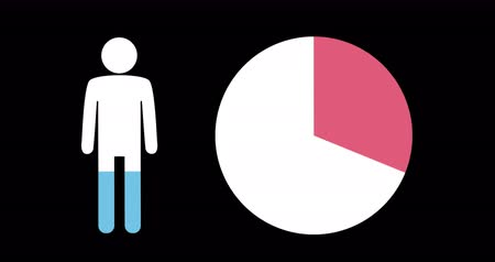 demographic : Animation of male shape and pie chart filling up with blue and pink on black background 4k