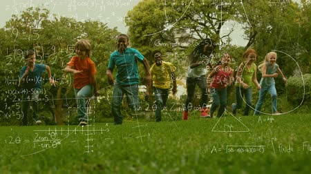 formulae : Animation of multi-ethnic schoolchildren running in the park with mathematical formulae in the foreground Stock Footage