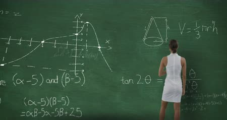 matemático : Animation of a young Caucasian woman seen from behind standing and looking at chalkboard with moving mathematical graphs and formulae written in chalk Stock Footage