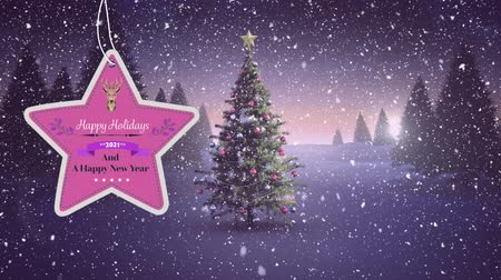 önemsiz şey : Animation of the words Happy Holidays 2021 and A Happy New Year written on a pink star shaped label decorated with a reindeer head with a Christmas tree and a countryside scene with falling snow at sunset in the background