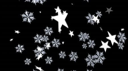 changing lights : Animation of falling stars and snowflakes on black background Stock Footage