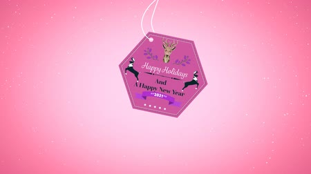 sob : Animation of the words Happy Holidays and A Happy New Year 2021 written on a hexagonal pink label decorated with a reindeer head, two jumping reindeer and purple flowers with a soft pink background Dostupné videozáznamy