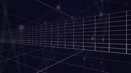referência : Animation of moving white grid lines with an interconnecting network of glowing white points and lines on a dark blue background