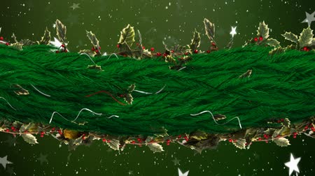 падуб : Animation of snowflakes and stars falling with green Christmas decoration of holly and berries on green background Стоковые видеозаписи