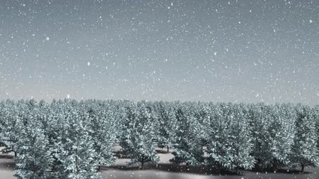 seasons changing : Animation of fir trees and snow falling in countryside Stock Footage
