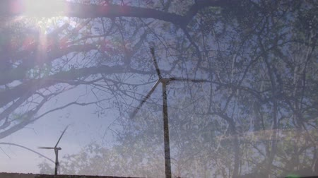 sustainable resources : Animation of turning wind turbines with trees in the foreground