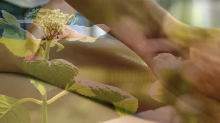 masszőr : Animation of  woman having massage done with flowers moving in the foreground