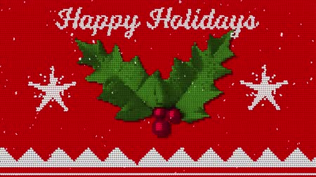 падуб : Animation of the words Happy Holidays written in white on red fabric with Christmas pattern with holly and berries. Festive christmas concept. Стоковые видеозаписи