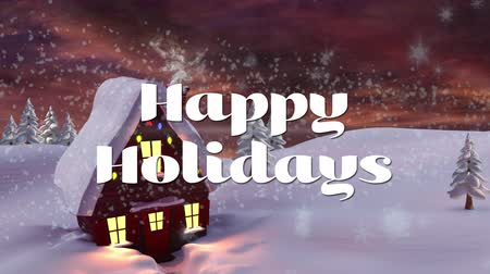 christmas dekorasyon : Animation of the words Happy Holidays written in white with winter scenery with house in the background. Festive christmas concept. Stok Video