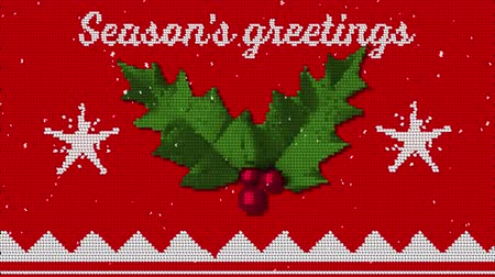 падуб : Animation of the words Seasons Greetings written in white on red fabric with Christmas pattern with holly and berries Стоковые видеозаписи