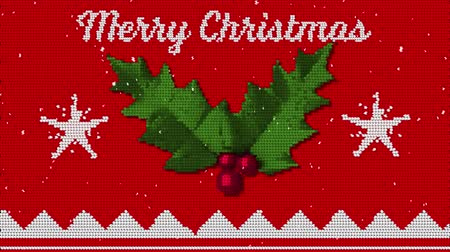 падуб : Animation of the words Merry Christmas written in white on red fabric with Christmas pattern with holly and berries Стоковые видеозаписи