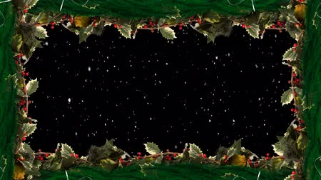 падуб : Animation of snow falling framed in holly and berries Christmas decoration on black background