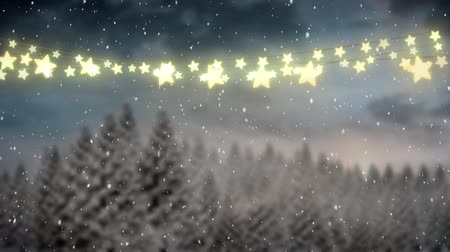 changing lights : Animation of winter scenery with glowing string of Christmas fairy lights frame with fr trees and snow falling in the background