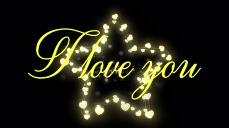 i love you : Animation of the words I Love You written in yellow with glowing fairy lights star on black background Stock Footage